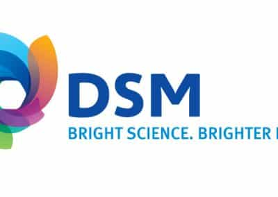 dsm-logo-jpg-version